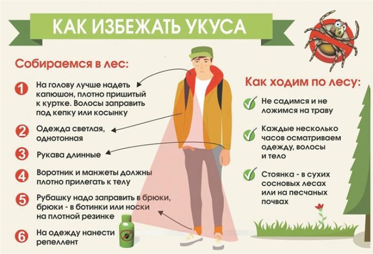 kak-izbezhat-ukusov-kleshhej-luchshie-sposoby-zashhity 5cac781260e16